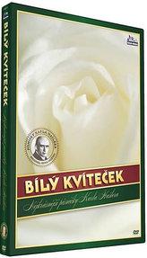 Hašlerky - Bílý kvíteček - DVD