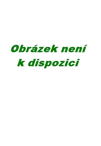 P.Dopita - Vánočni sen - 1 CD