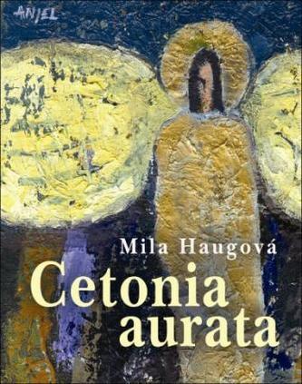 Cetonia aurata - Mila Haugová