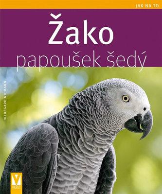 Žako papoušek šedý - Jak na to