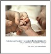 Psychosociální  aspekty v současném  českém porodnictví