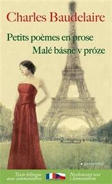 Malé básně v próze / Petits poémes en prose