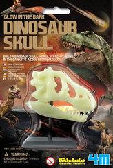 Dinosauří lebka
