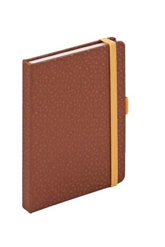 Journal notes - Bronzy