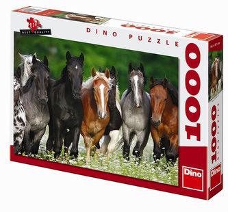 Koně na louce - puzzle 1000 dílků