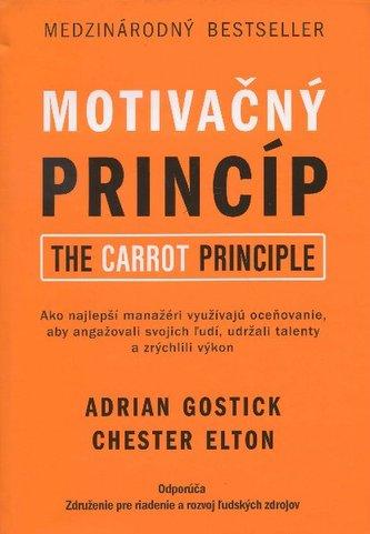 Motivačný princíp
