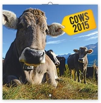 Krávy - nástěnný kalendář 2015