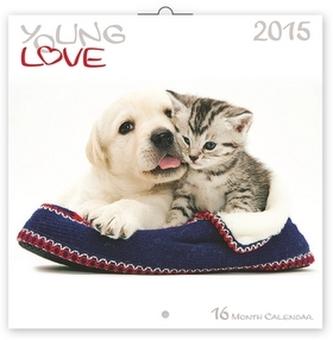 Young Love Koťata & Štěňata - nástěnný kalendář 2015