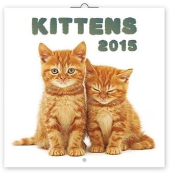 Koťata - nástěnný kalendář 2015