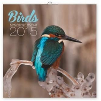 Ledňáčci - nástěnný kalendář 2015