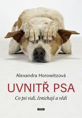 Uvnitř psa - Co psi vidí, čenichají a vědí