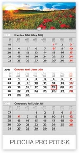 Kalendář 2015 - Krajina šedý 3měsíční s českými jmény