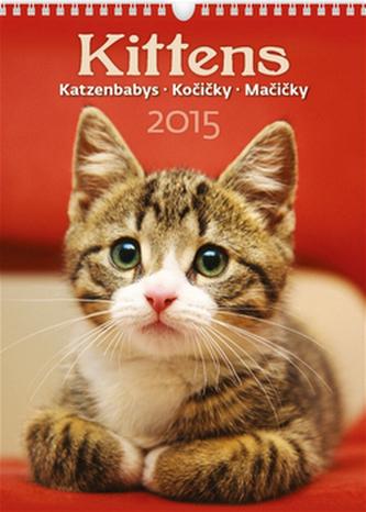 Kittens Kočičky - nástěnný kalendář 2015