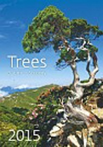 Kalendář nástěnný 2015 - Stromy