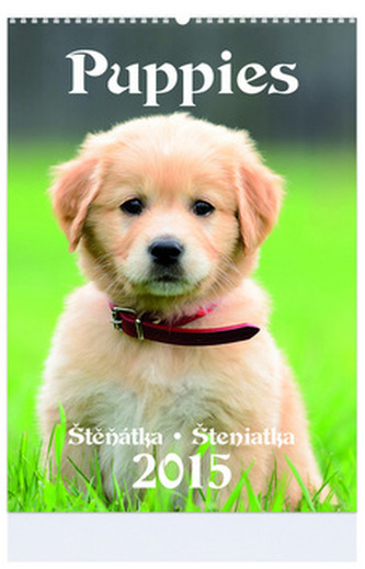 Puppies - nástenný kalendář 2015