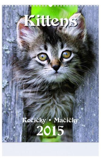 Kittens - nástenný kalendář 2015