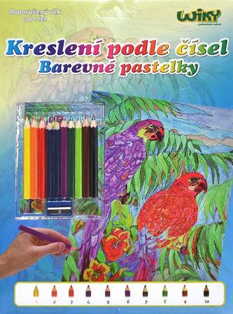 Kreslení podle čísel - Papoušci