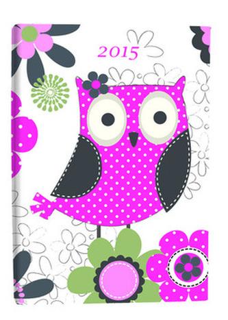 Diář B6 Owl denní 2015