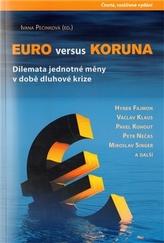 Euro versus koruna