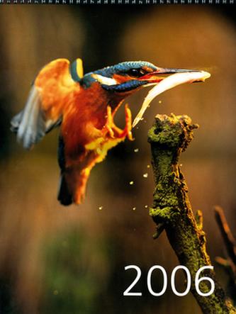 Ledňáček 2006 - nástěnný kalendář