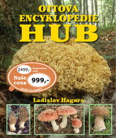 Encyklopedie hub