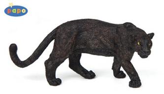 Jaguár černý
