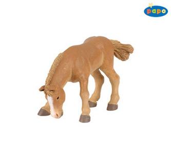 Hříbě bouloňského koně
