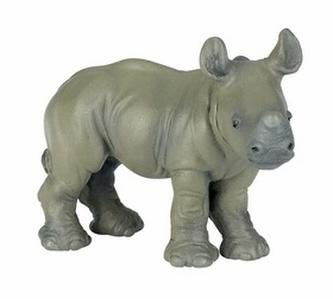 Nosorožec mládě