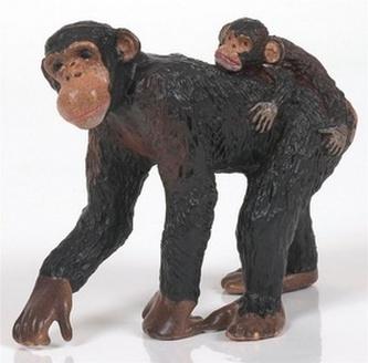 Šimpanz samice a mládě