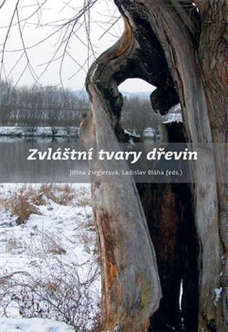 Zvláštní tvary dřevin - Ladislav Bláha