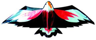 Létající drak orel