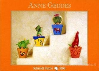 Puzzle Schmidt 1000 A.Geddes