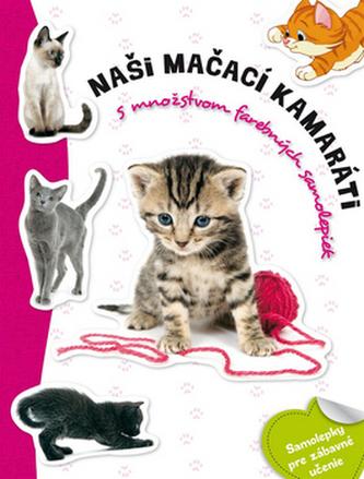 Naši mačací kamaráti