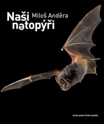 Naši netopýři