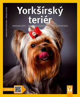Yorkšírský teriér - Jak na to