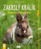 Zakrslý králík - Jak na to