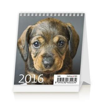 Mini Puppies 2016 - stolní kalendář
