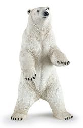 Medvěd lední stojící