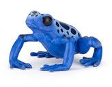 Žába modrá