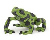Žába zelená