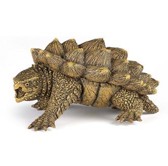 Alligator želví