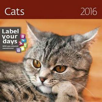 Kalendář nástěnný 2016 - Cats