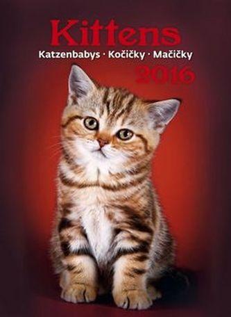 Kalendář nástěnný 2016 - Kočičky - Kittens