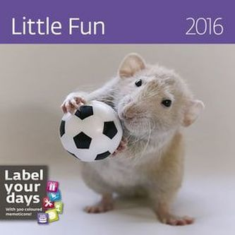 Kalendář nástěnný 2016 - Little Fun
