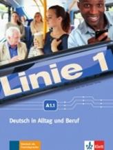 Linie 1 A1.1 - Kurs/ Übungsbuch + DVD