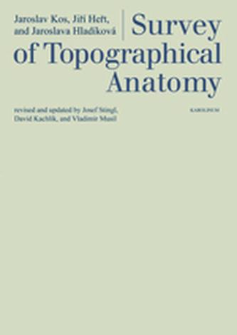Survey of Topographical Anatomy