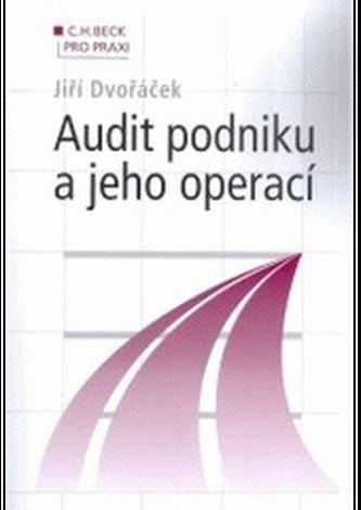 Audit podniku a jeho operací