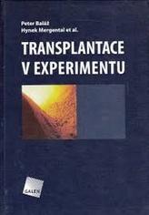 Transplantace v experimentu
