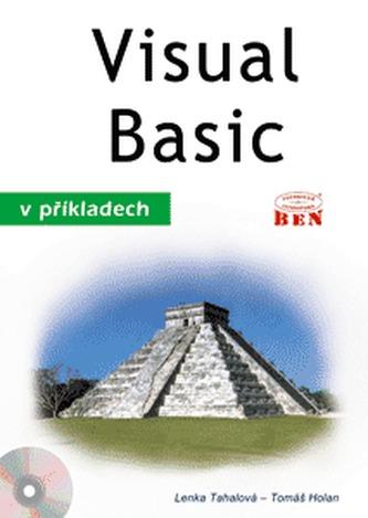 Visual Basic v příkladech