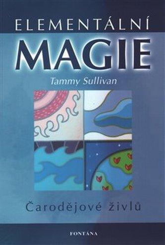Elementální magie